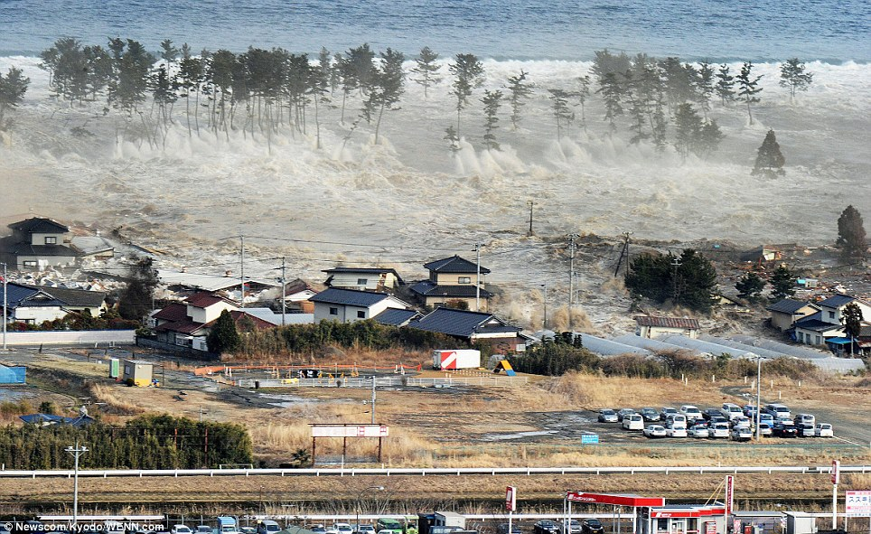 Image result for tsunami in japan today