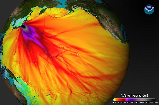 This graphic, issued by the National Oceanic and Atmospheric Administration, shows the height of waves from the tsunami as it travelled across the Pacific basin