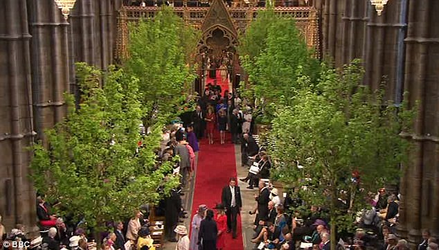 Trees have been put up inside the Abbey to give it an outdoor feel. This morning there was a party atmosphere inside as they waited for William and Kate