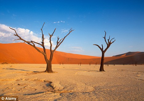 Red dunes in Namibia. Much of Africa, Asia and South America could see 'the permanent emergence of unprecedented summer heat' in the next 20 years