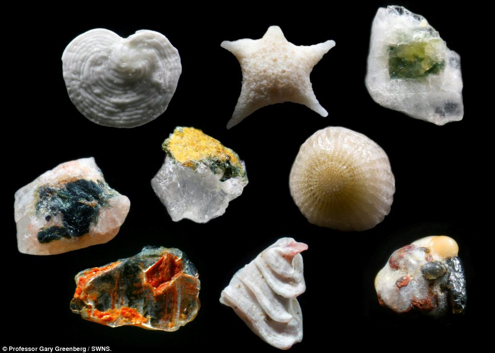 Incredible: To think we are walking on 'these tiny treasures'