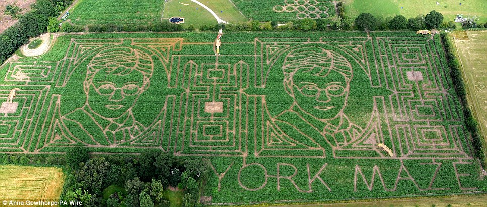 Fantasy fields: Farmer Tom Pearcy has carved Harry Potter into his crops of maize in York
