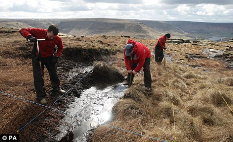 The search for Keith's body on Saddleworth Moor has been going on for decades - but Brady has refused to reveal the grave's whereabouts