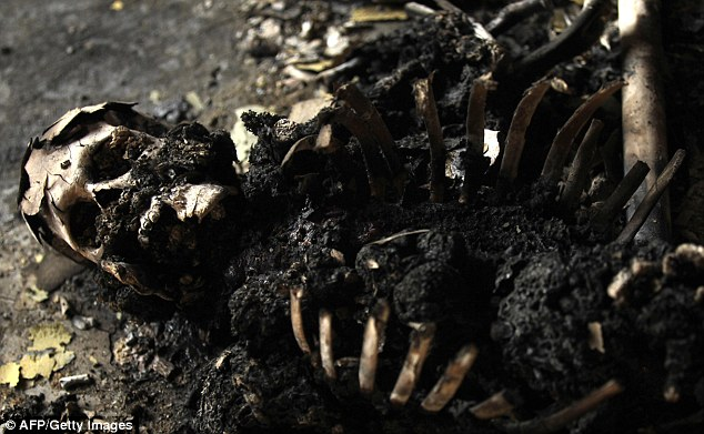A charred skeleton lies at a makeshift prison next to a military base abandoned by elite loyalist troops in the district of Salaheddin in Tripol