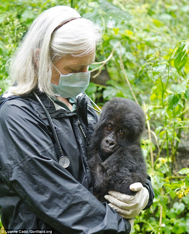 Dr Jan Ramer, pictured, said of Shamavu: 'He appears to be quite healthy other than some parasites and dry skin.'