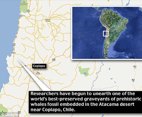 Location: The bones were found near Copiapo, around 440 miles north of Chile's capital, Santiago