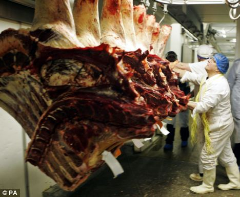 Blood test for mad cow disease used in UK for the first ...