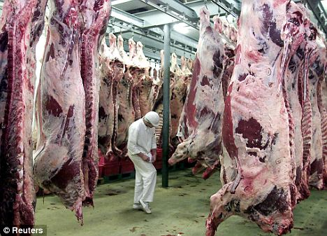 Messy: Peta hopes in vitro meat production could cut the number of animals raised for slaughter