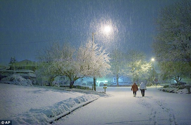 Lovely night for a stroll: A winter snow inspires Lincoln neighborhood residents to take an early morning walk in Vancouver, Washington