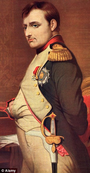 Celebrated: Napoleon Bonaparte will be commemorated with a new theme park to be built at the site of the Battle of Montereau - if funding can be secured