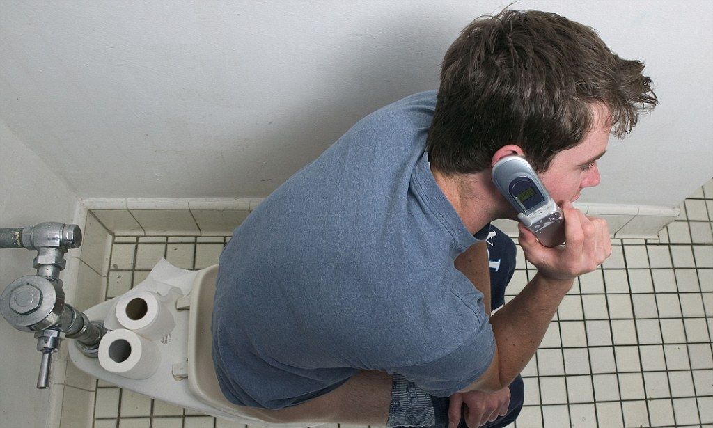 Threequarters of people admit to using mobile phone while on the toilet  Daily Mail Online