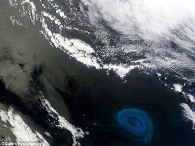 Stunning image: The 90-mile-wide whirlpool, spotted off the coast of South Africa by Nasa's Terra satellite, looks deadly but it more likely to create life by lifting nutrients from the ocean floor