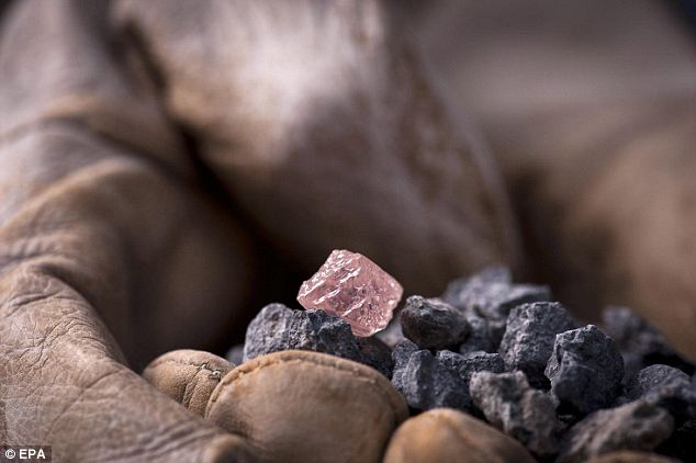 Rock on: The gem was found at Rio Tinto's Argyle mine in the east Kimberley region of Western Australia