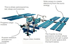 Building the International Space Station brick by brick