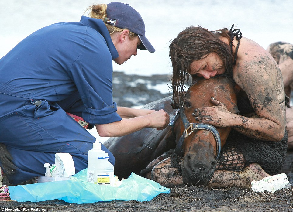 Tidal terror: The brave mother tries to keep the horse calm as rescuers work how out to free the animal