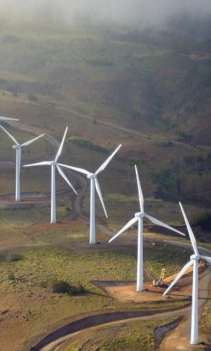 Hawaiian Island of Maui, utilizes an array of 1.5 megawatt wind turbines to produce electricity