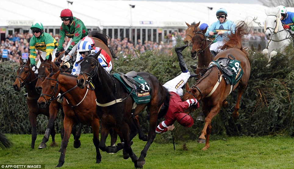 Tumble: Jockey James Reveley, centre, falls from Always Right at The Chair fence during the Grand National