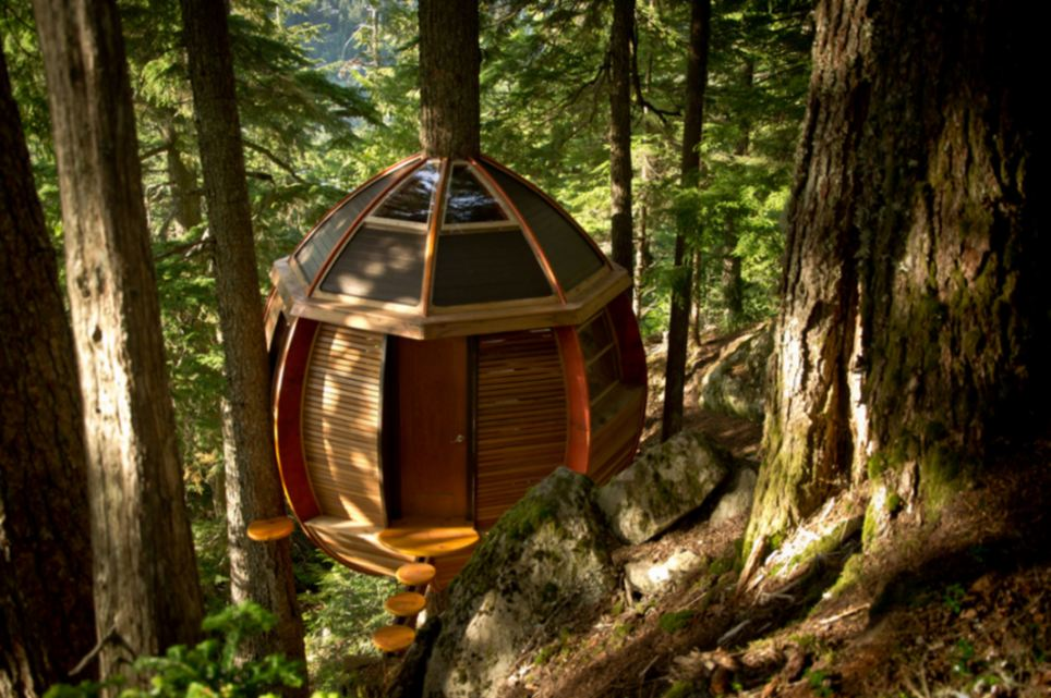Hidden: The treehouse in Hemlocks was built in a forest away from view of nearby homes