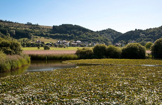 Scientists at the GFZ German Research Centre for Geosciences analysed lake sediment in Lake Meerfelder Maar, and found direct evidence of a sudden cooling caused by a 'solar minimum'