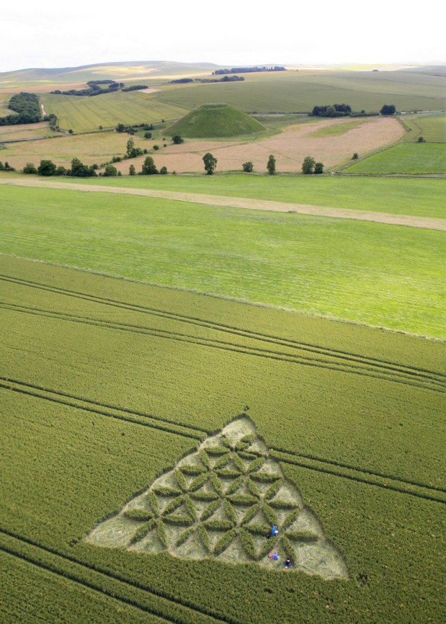 Intricate: The crop circle of triangular design, which is decorated with an intricate floral pattern, lies close to ancient Silbury Hill, the largest man-made mound in Europe