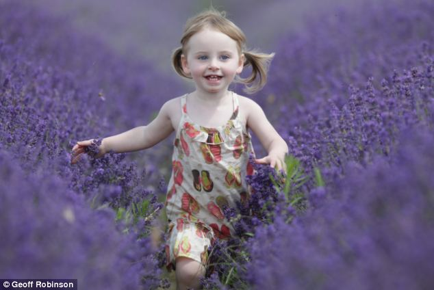 Image result for lavender field kids