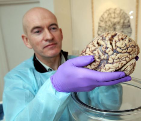 Nader-Nazemi-Human-Brains-Smart-size-Nader-Nazemi