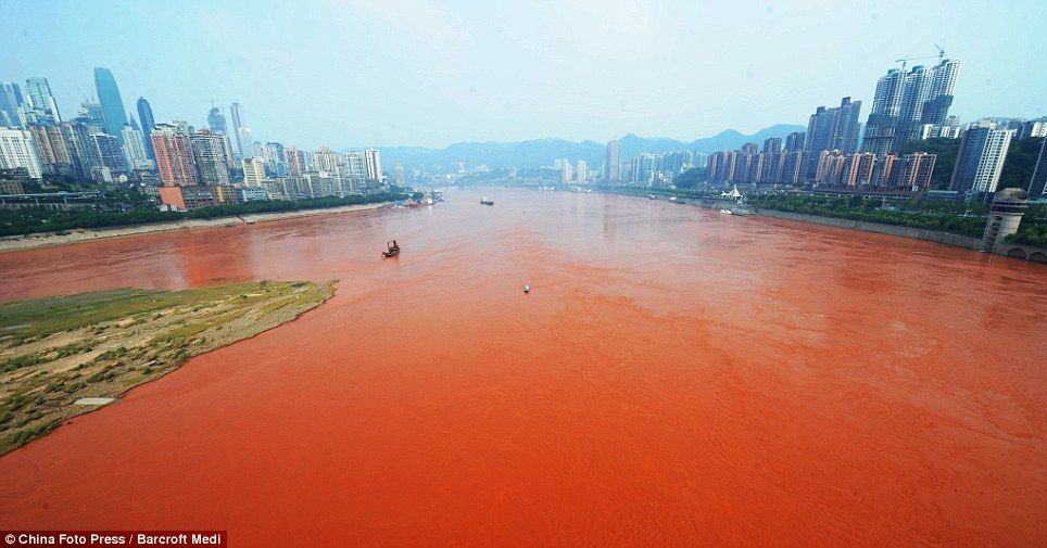 Shock: The Yangtze river, which runs through the city in south-western China, turned a bright shade of orange-red yesterday