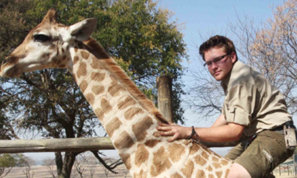 Teenager revives British ancestors tradition by learning to ride sixfoot GIRAFFE on his farm