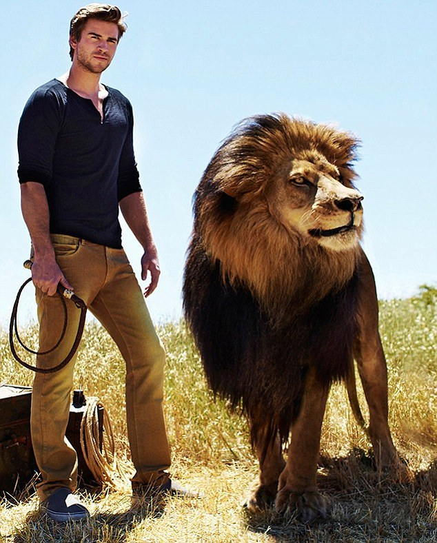 Cute Wallpapers Of All Kind Of Animals Liam Hemsworth Goes Toe To Toe With A Lion As He Becomes