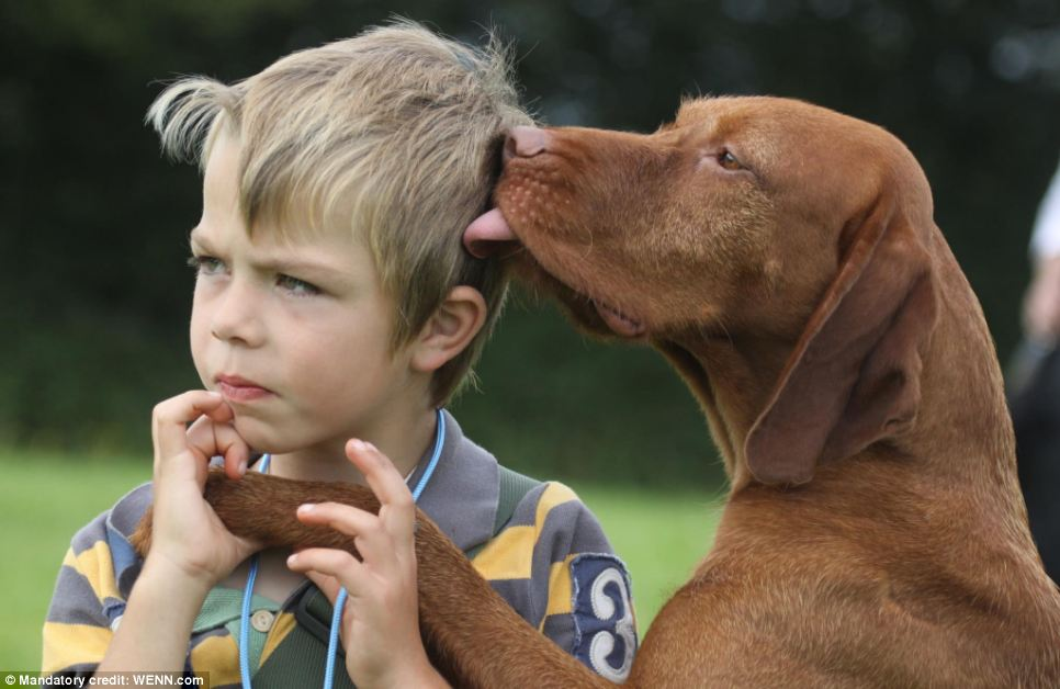I've got this competition licked: Winner in the Man's Best Friend category. Photo taken by Emma Carter