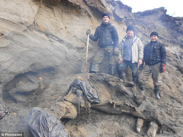 Incredible: An 11-year-old boy uncovered this nearly intact wooly mammoth in north Russia