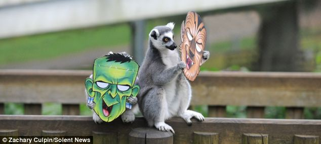 Woburn Safari Park spokeswoman Abi Crowley says the Halloween fun went down a treat