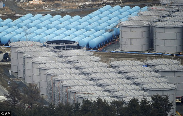Storage: Dozens of tanks containing around 200,000 tons of radioactive water - enough to fill more than 50 Olympic-sized swimming pools are seen outside the Fukushima plant