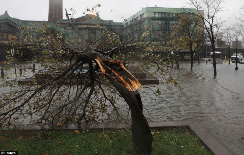 Derribado: Un árbol roto se ve durante los vientos como la Estación Sendero comienza a ser inundada en Hoboken, Nueva Jersey