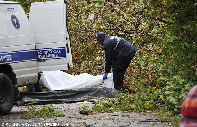 Buried: Emergency services remove the two bodies from beneath the tree in Ditmas Park, Brooklyn