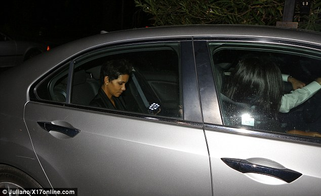 Lost fight: Halle looked embattled as she left the hearing via the grey vehicle