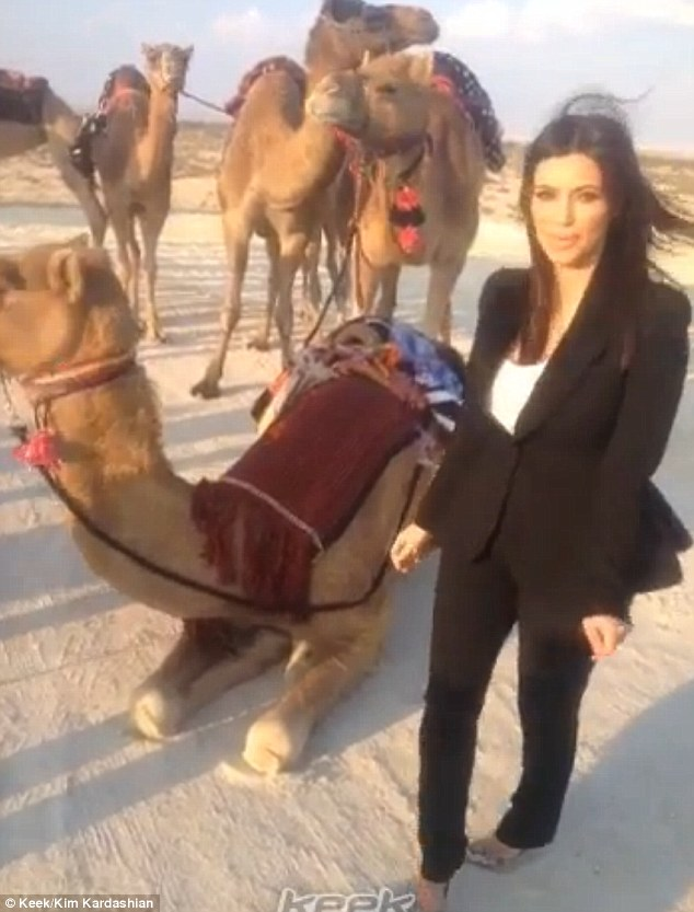 Daring: A nervous Kim Kardashian poses next to a camel in Bahrain during her three-day trip to the Gulf