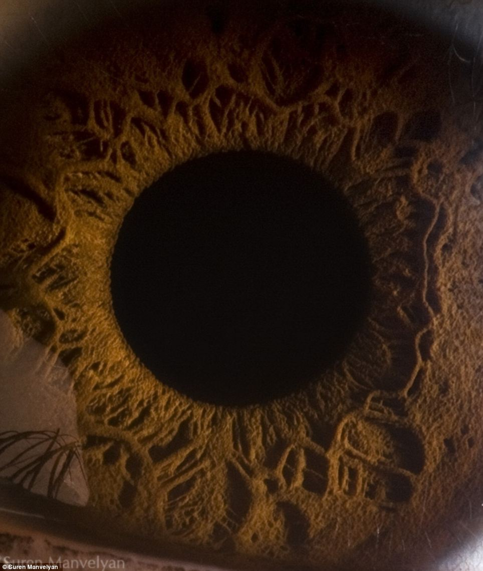 Mysterious: The extreme close up of this picture makes the shot one of the most alien looking in the set