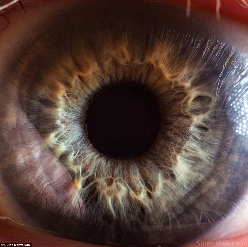Unique: The macro ocular portraits were taken by Armenian physics teacher Suren Manvelyan, 36, using his friends, colleagues and pupils as models