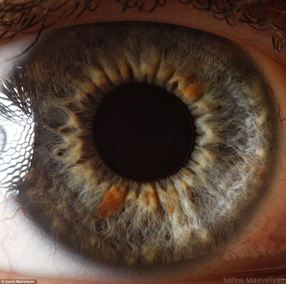 The windows to the soul: But seen so close they seem less like human anatomy and almost like the landscape of an alien world