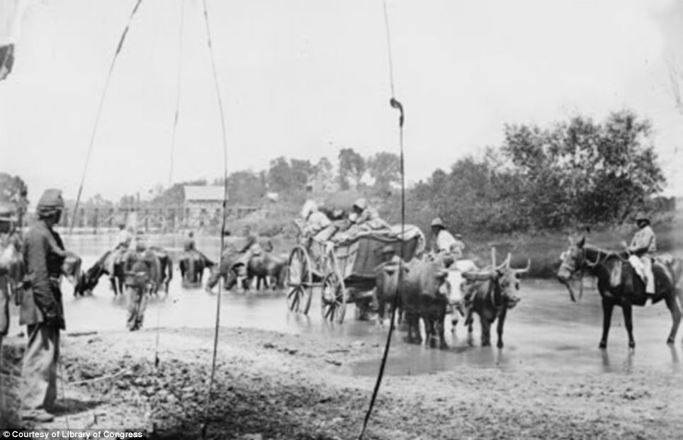At work: Fugitive African Americans fording the Rappahannock River in Virginia in 1862 - the year before the Emancipation Proclamation
