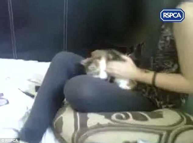 Cruel: The teenagers posted the 36-second clip of them abusing the distressed animal on Facebook