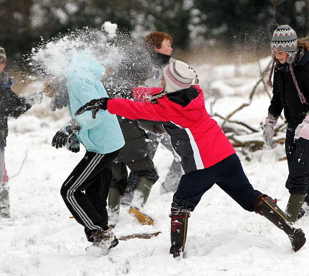 Spoil sports: These children had fun in the snow but youngsters in Country Durham could be arrested if they are caught throwing snowballs (file pic)