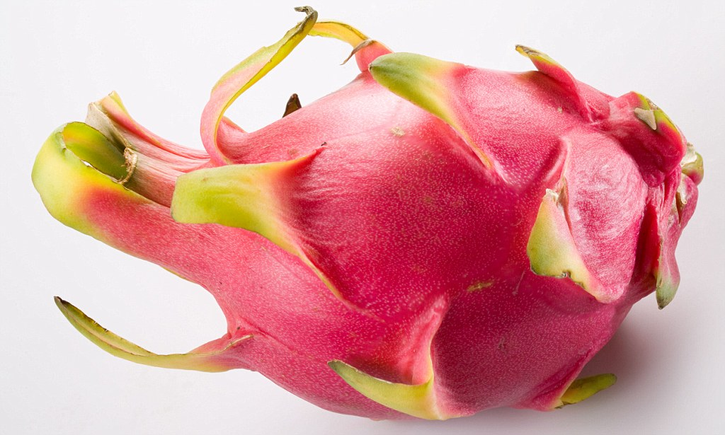 CACTUS Fruit That Could Treat Diabetes Dragon Fruit Is