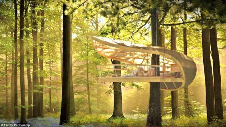 Awesome Tree Houses Luxury Treehouse Floating House in Trees with Lounge Chairs Eterra Samara Canada Bruce Peninsula Forest