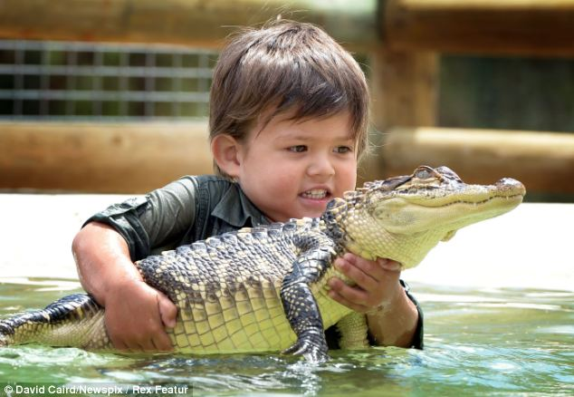Cute Chinese New Year Wallpaper See You Later Alligator Fearless Boy 3 Struggles To