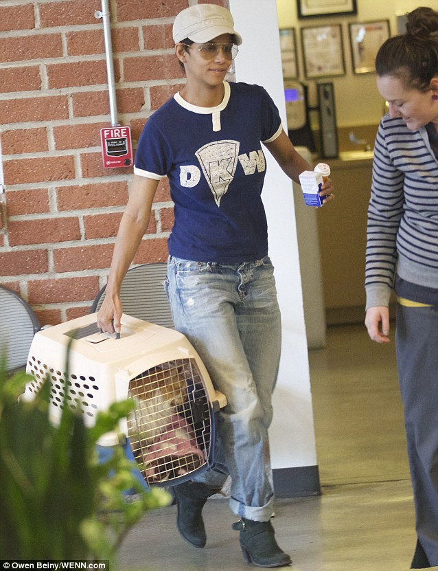 Catwoman to the rescue: Halle Berry was seen taking her pet cat to the vet in Los Angeles, California on Wednesday