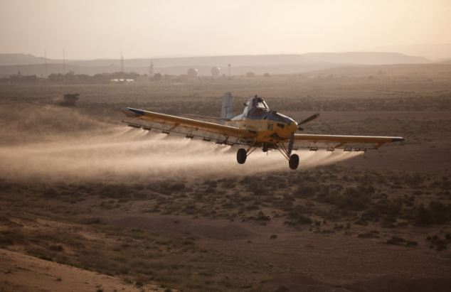 Pesticide spray: A light plane sprays deterrent on the ground in Israel near the Egyptian border in a bid to clear the swarm before Passover