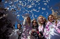 World Pillow Fight Day | Daily Mail Online