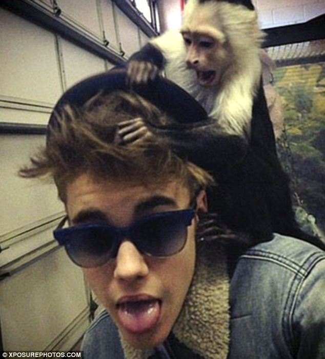 Justin Bieber, pictured with Mally the capuchin monkey, has been given an extension to complete paperwork to get his pet back